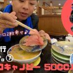 ジャイロキャノピー 50ccバイク旅 北海道2000㌔⑦ KOZYの自己紹介と標津町から根室(雨)ドローンなしHOKKAIDO 50cc Motor cycle Touring
